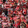 Benfica continua em roda alta ao manter rivais a quatro pontos na Liga Bwin